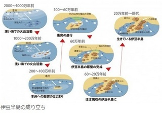 伊豆半島.jpg